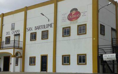 Entrevista a José Anselmo Cruz Sayago, gerente de la Cooperativa del Campo San Bartolomé – OLIBEAS