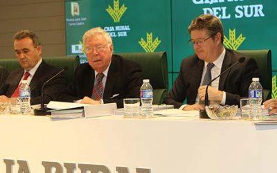 Caja Rural del Sur aprueba las cuentas de 2015 incrementando el resultado en un 22% con respecto al año anterior