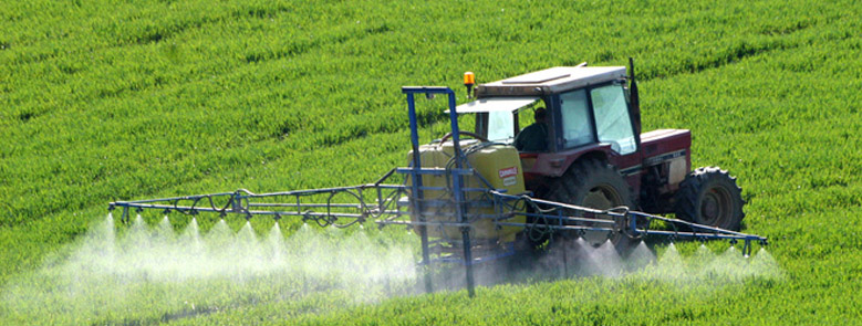 La transformación de la agricultura andaluza de la extracción a la transformación