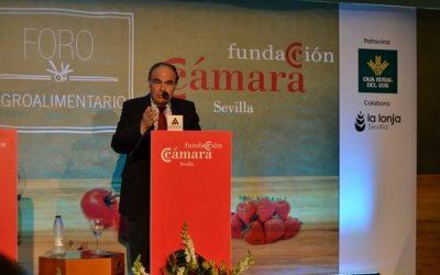 IV Foro Agroalimentario de la Cámara de Comercio de Sevilla patrocinado por Caja Rural del Sur