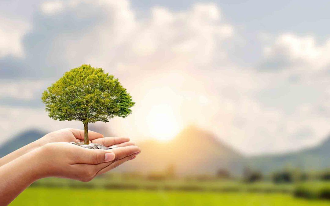 Gescooperativo te acerca los fondos de inversión sostenibles