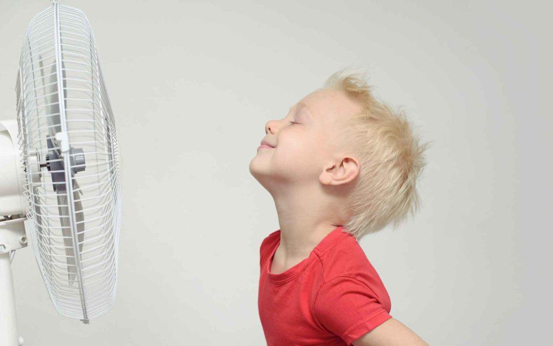 ¿Cómo consumir energía cuidando el medio ambiente? Mis Finanzas en Ruralvía te ayudará
