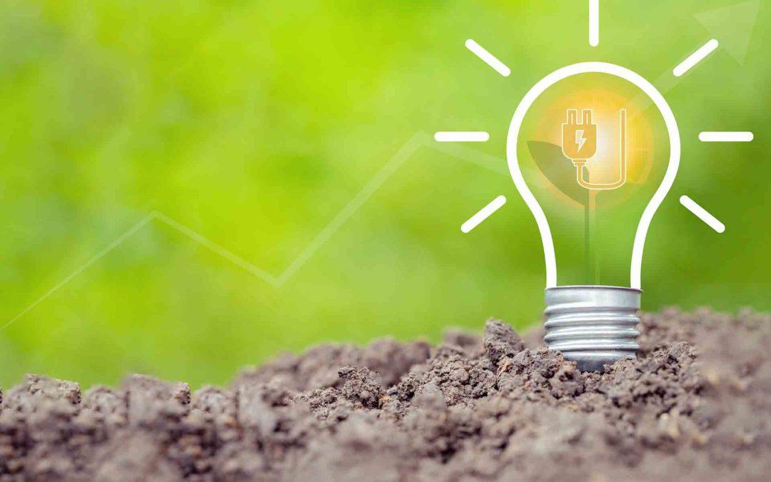 Cuida de tu bolsillo y reduce el gasto energético en la factura de la luz